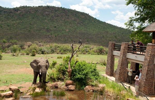 Công viên Bảo tồn Quốc Gia Pilanesburg