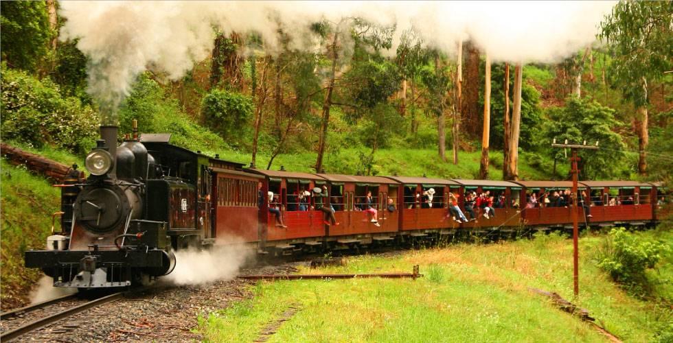 Kết quả hình ảnh cho Xe lửa hơi nước kiểu Úc (Puffing Billy)