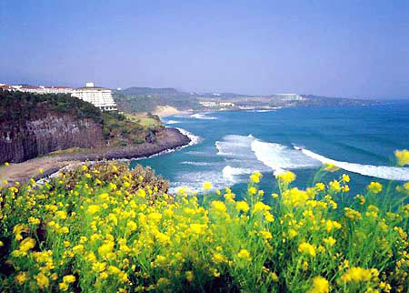 Hàn Quốc - Đất nước của sự lãng mạng và thơ mộng (Baychung.vn)