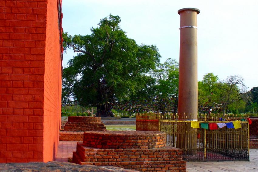 Lâm Tỳ Ni Ấn Độ