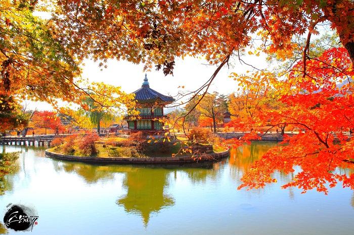 Cung điện Gyeongbok mùa thu