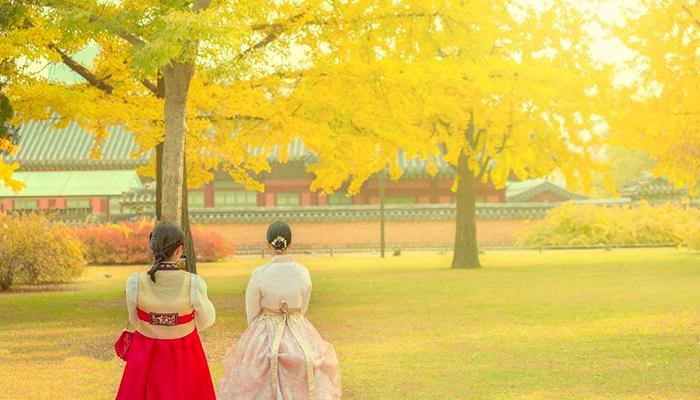 Mùa thu Hàn Quốc bắt đầu từ tháng 9 đến hết tháng 11