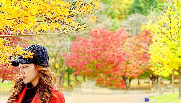 Mùa thu Hàn Quốc mê hồn trên các vườn quốc gia