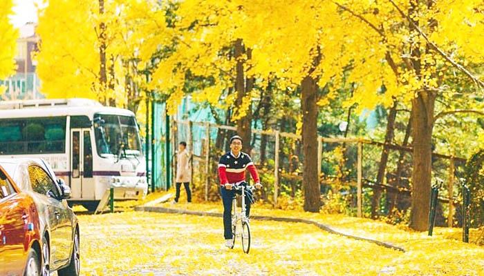 Mặc gì khi du lịch Hàn Quốc mùa thu ?
