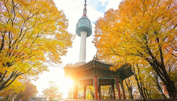 Mùa thu Seoul đáng ngạc nhiên
