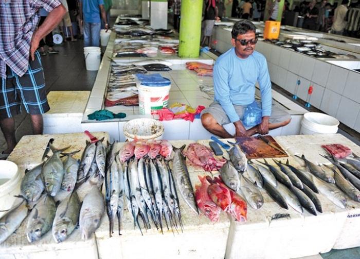 Chợ cá địa phương