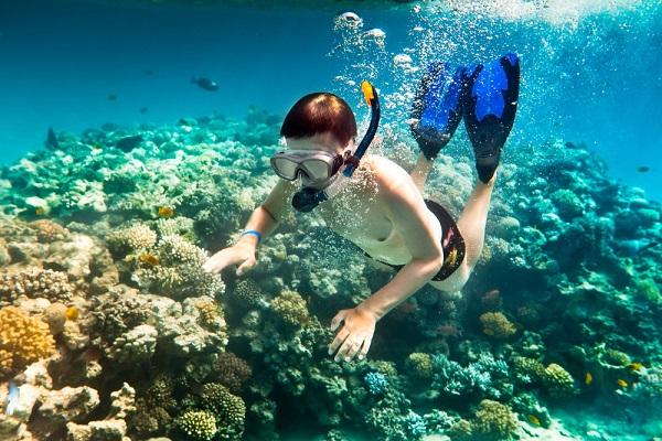 Tham gia lặn biển khám phá dưới lòng Maldives