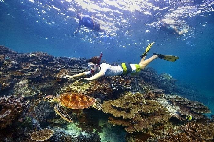 Trải nghiệm lặn ngắm biển