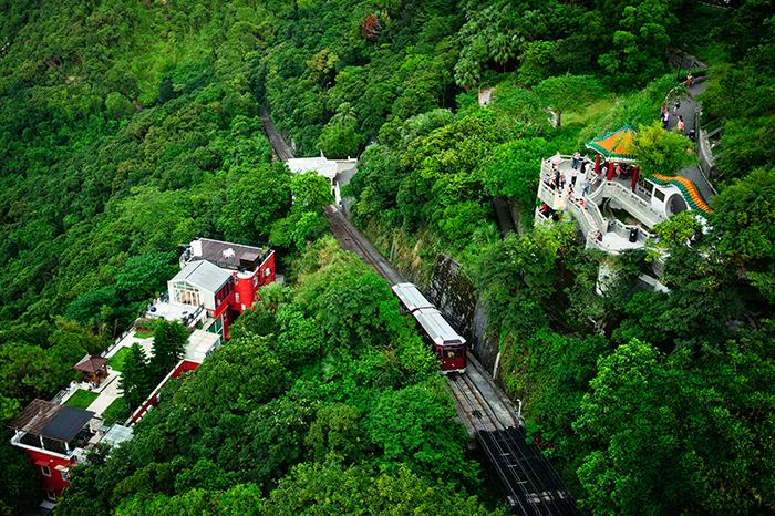 Đỉnh Núi Thái Bình Hồng Kông