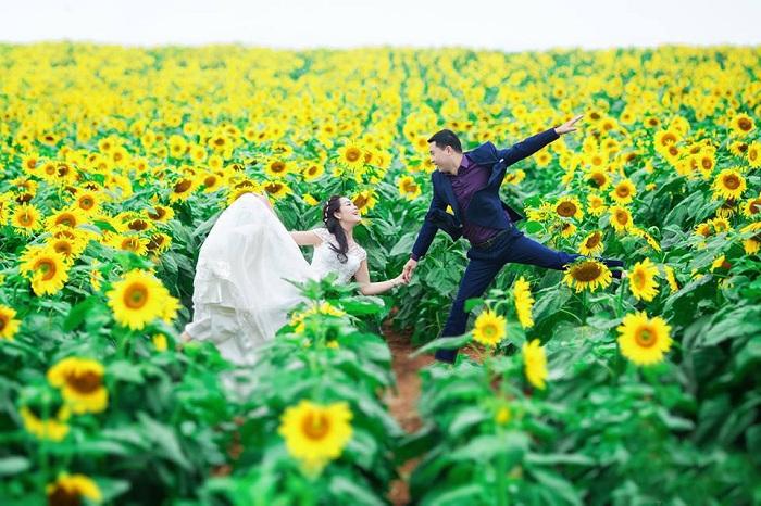 Những bức ảnh cưới đẹp và rực rỡ vô cùng
