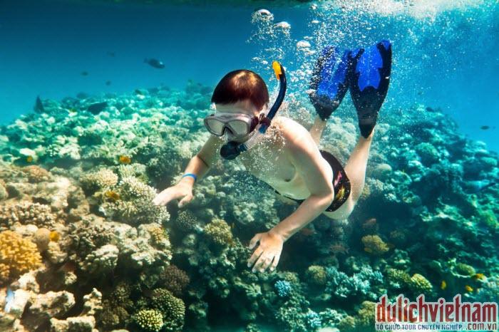 Lặn biển ngắm san hô ở Nha Trang
