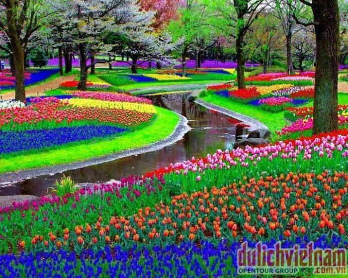 Công viên Hitachi đa sắc màu