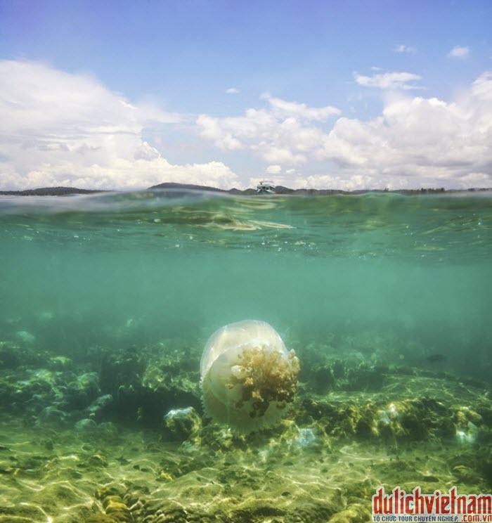 Vẻ đẹp biển Phú Quốc