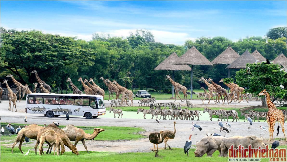 Vườn thú lộ thiên Safari World