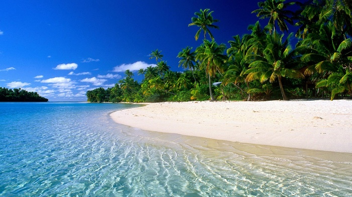 đảo-dừa