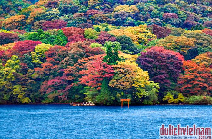 Hồ Ashi Hoken