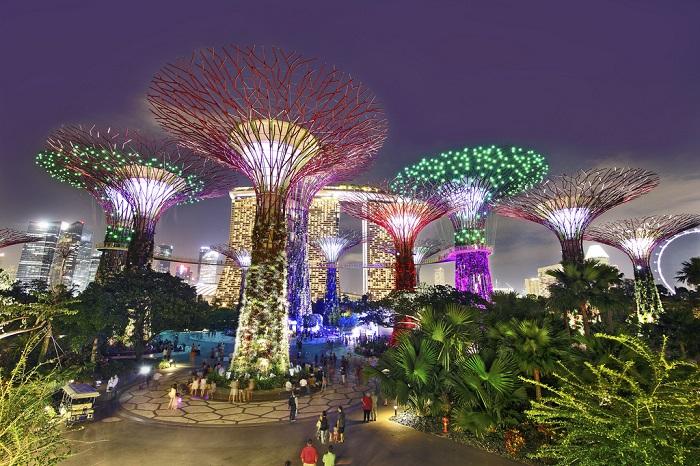 Gardens by the Bay - những siêu cây khổng lồ phát sáng vào ban đêm
