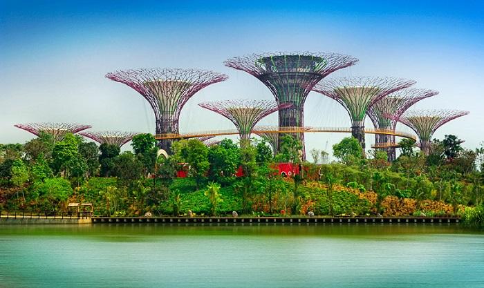 Gardens by the Bay - đi dạo dọc theo bờ biển và ngắm cảnh đường chân trời tuyệt đẹp