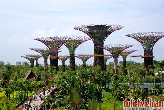 Du lịch Singapore - Vườn Garden By The Bay