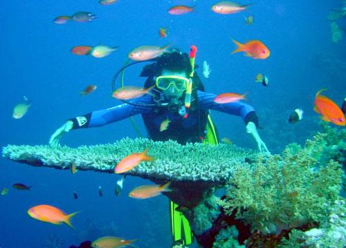 du lịch Nha Trang giá rẻ